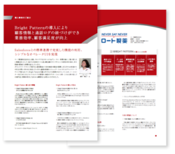 pdf-thumb-rohto
